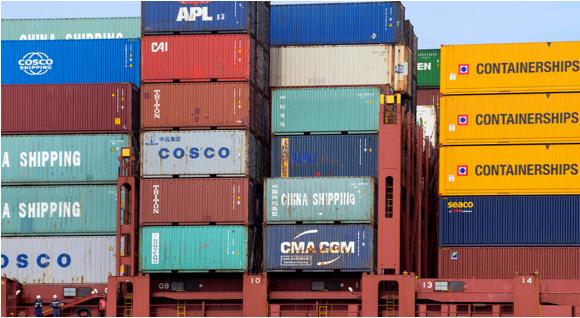 immagine_container